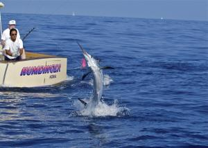 Hawaii Fishing Kona Sportfishing