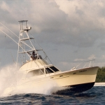 Charter Boat Humdinger in Kona Hawaii