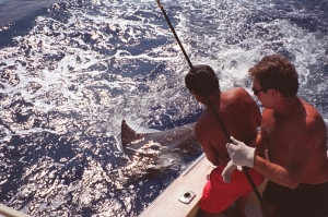 kona fishing reports hawaii