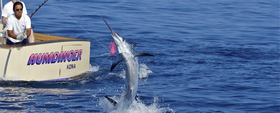 [Image: hawaii-fishing-kona-charters.jpg]