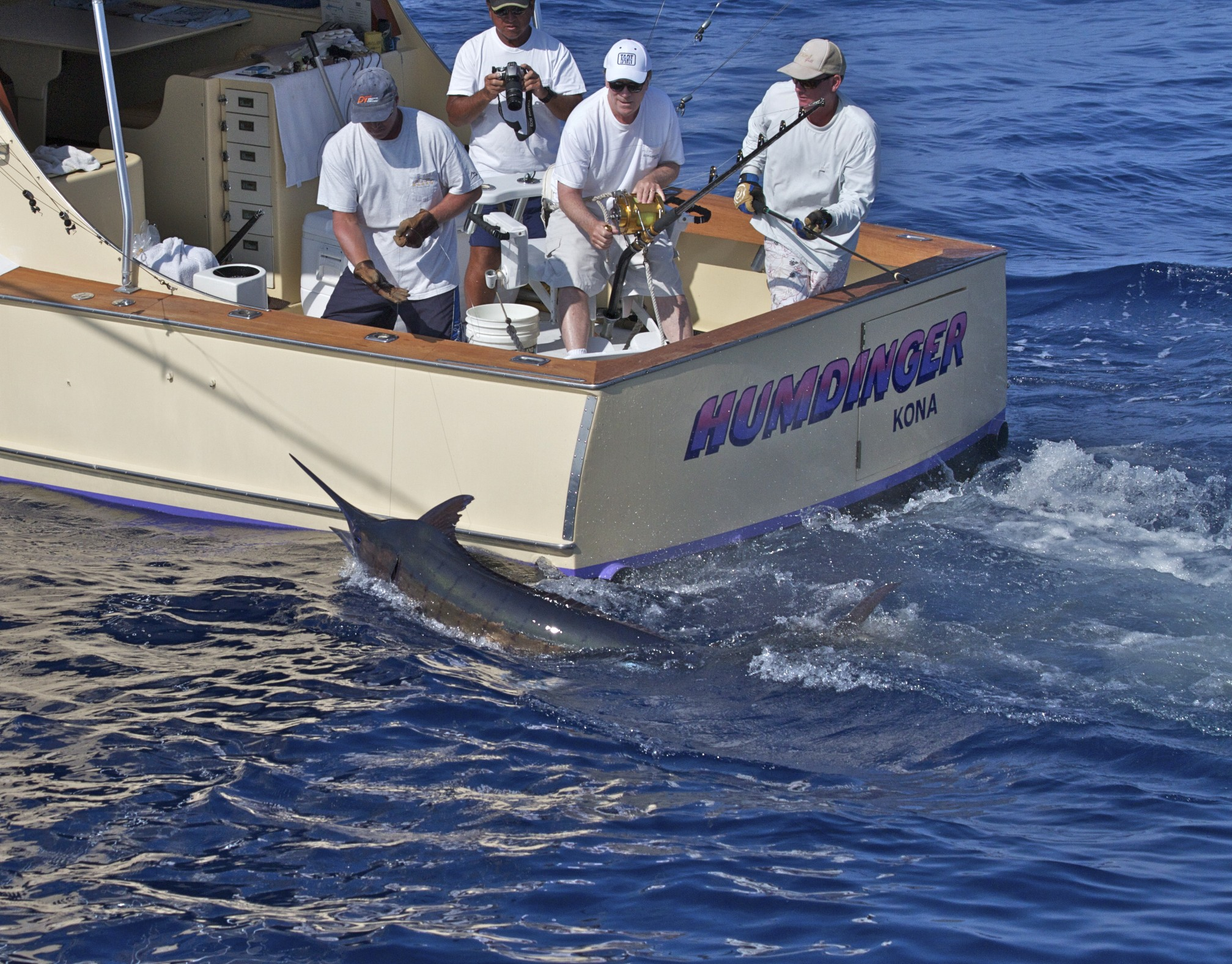 Fishing picture kona blue marlin tailwalking for Kona fishing charters