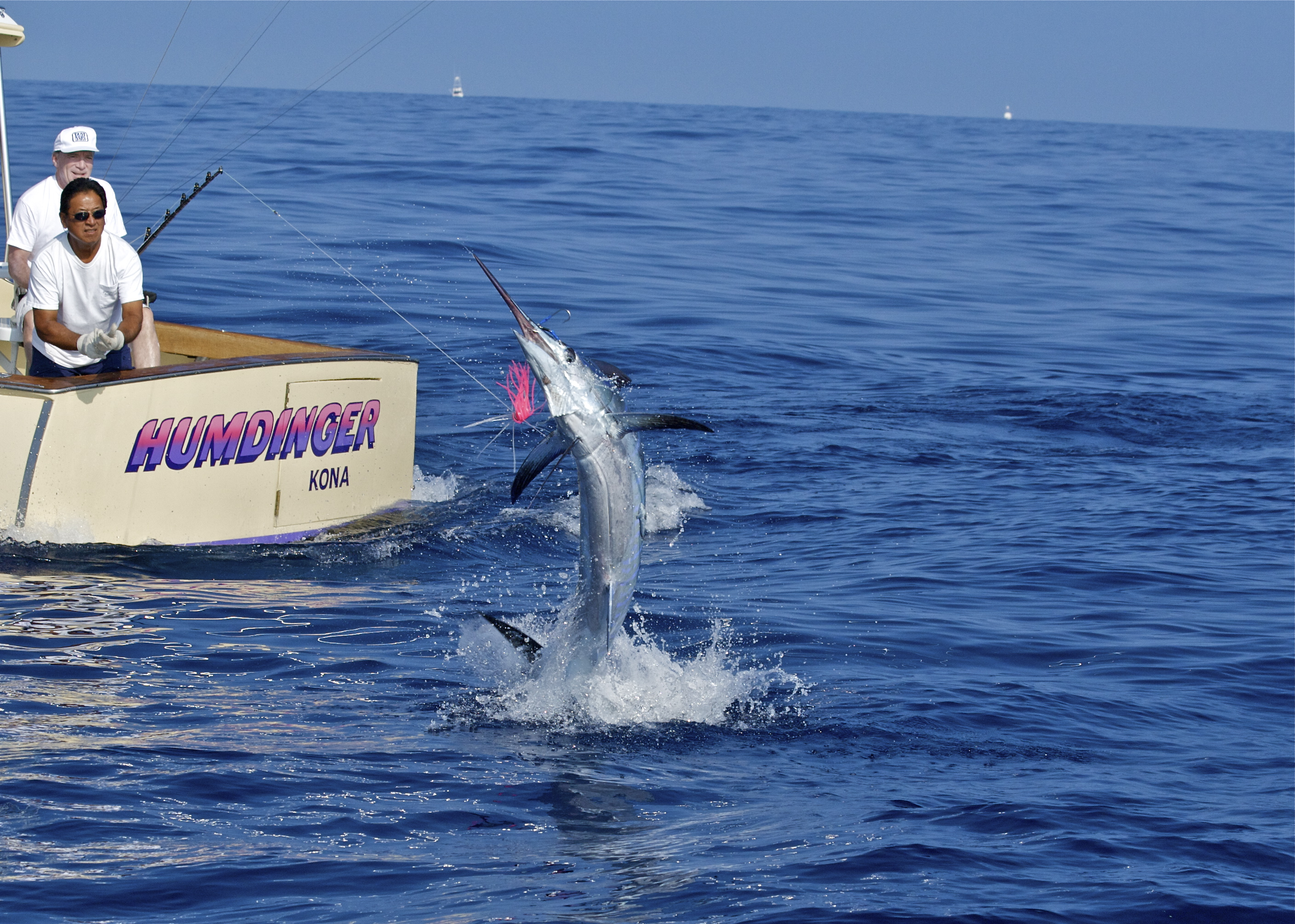 404 not found humdinger sportfishing for Hawaii fishing charters