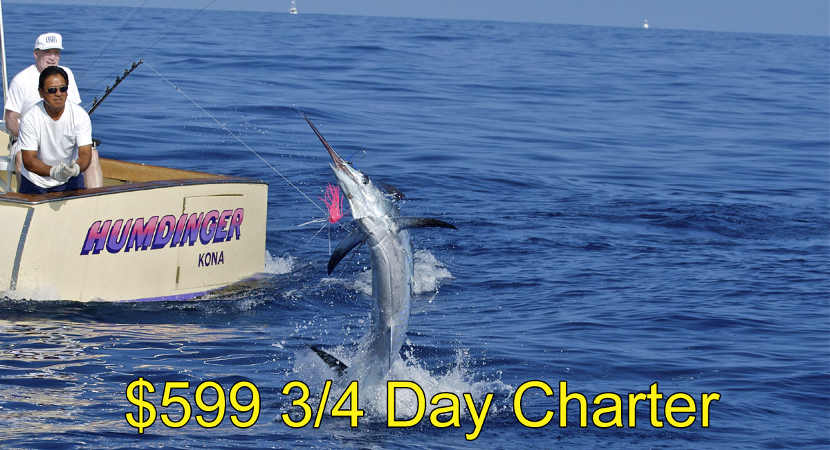 599 3 4 day kona fishing charters for Kona fishing charters