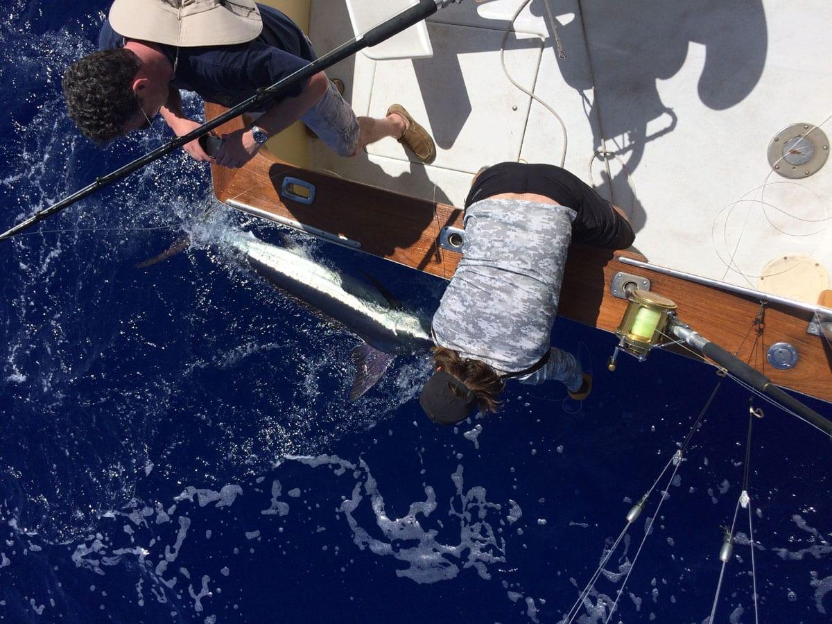 deep sea fishing - kona
