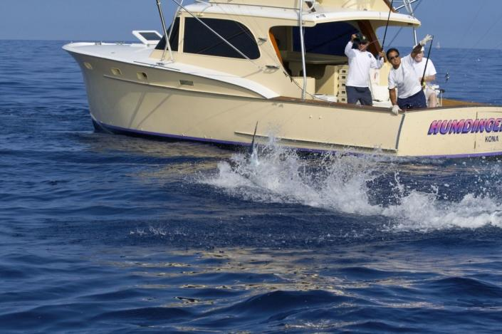 kona sport fishing