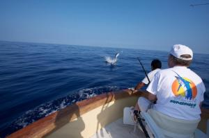 hawaii fishing charters kona hawaii