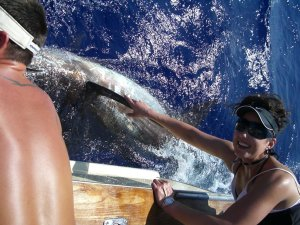 Kona Sportfishing Report August