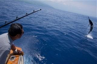 sport fishing in kona