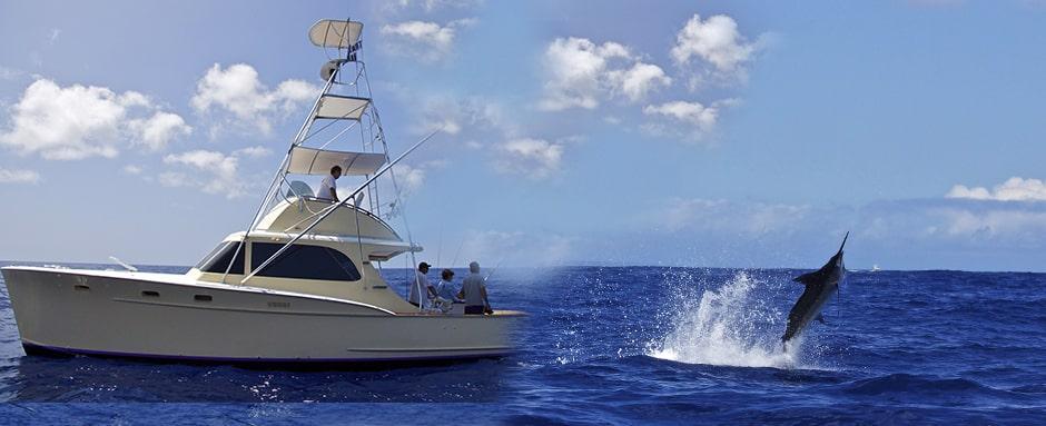 Photos from kona fishing charters kona hawaii marlin for Marlin fishing charters