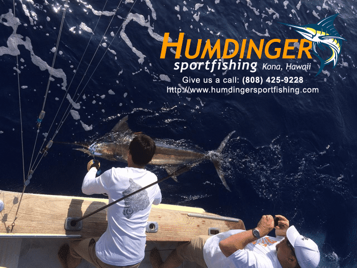 Fishing Report June 15 2016 kona hawaii