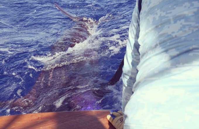 Fishing Report Big Island