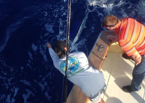 Blue Marlin - Deep Sea Fishing trip pic