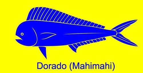 Dorado-Mahimahi
