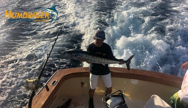 Two Ono and a Blue Marlin